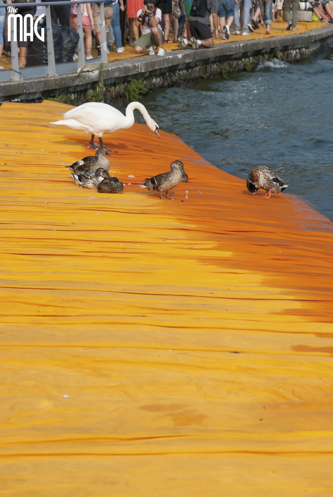 the-flaoting-piers-christo-lago-iseo-the-mag-foto-emanuela-veschi-3