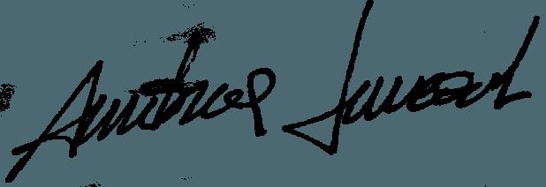 Andrea Luccioli - firma