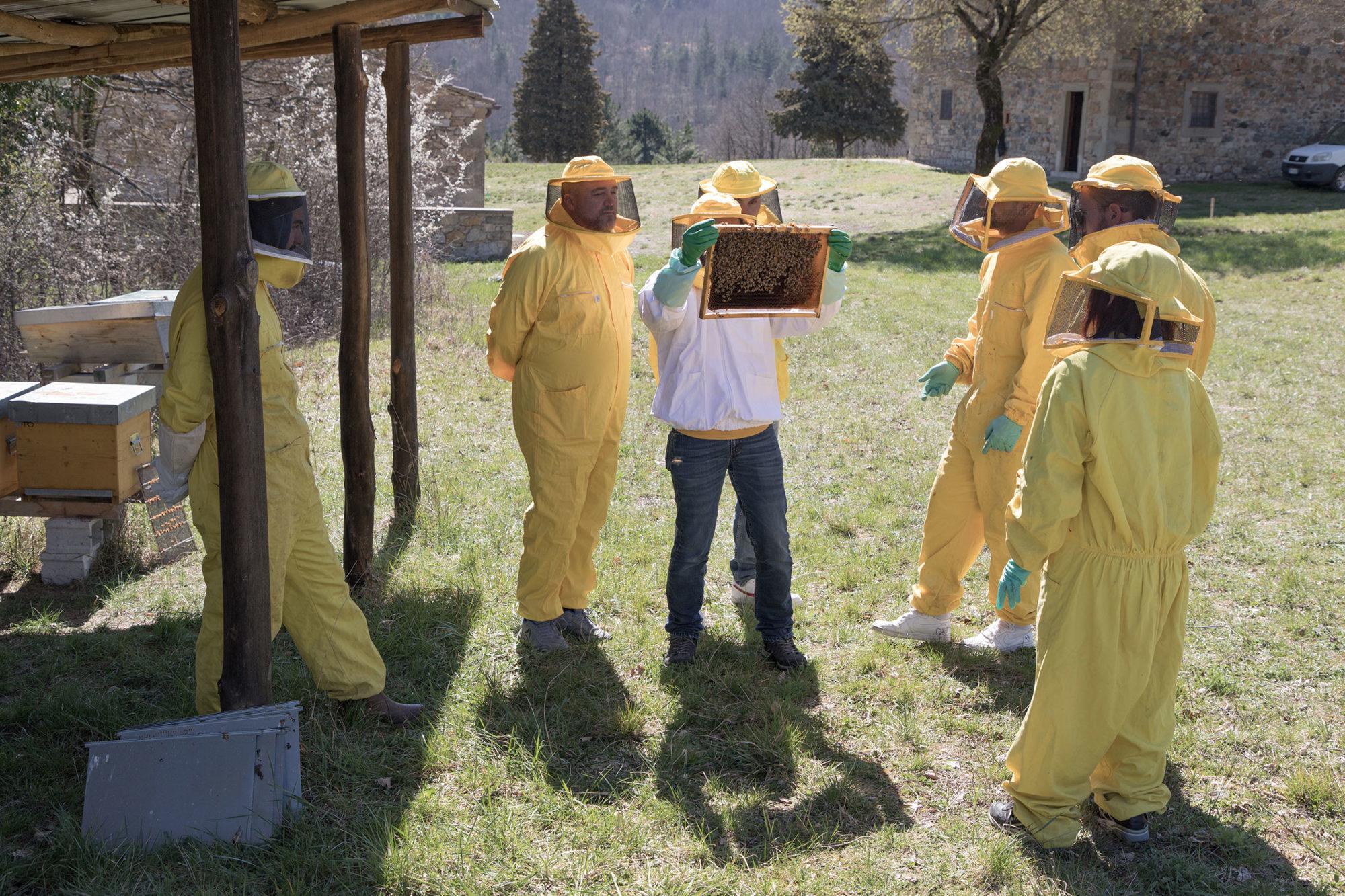 esercitazione pratica di come estrarre un telaio da un alveare durante il bee-friendly CAMPUS